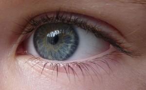 componentes-dos-olhos